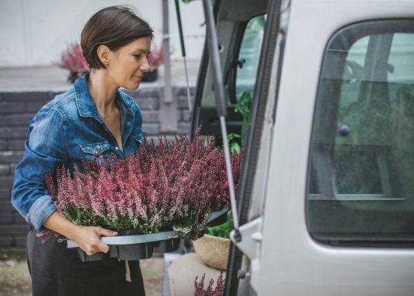Frau packt Blumen in Auto
