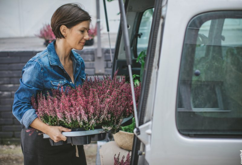 Frau lädt Blumen in Auto