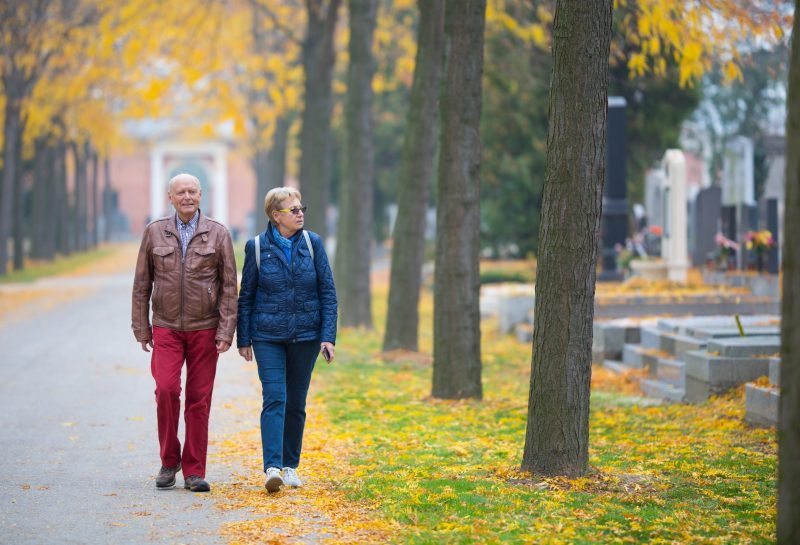 senior couple walking in park like cemetery graveyard in austrian zentralfriedhof in vienna with graves tombstones all saints day series atumn november