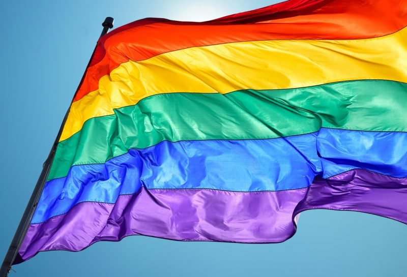 Rainbow Flag consists of six stripes, with the colours red, orange, yellow, green, blue, and violet